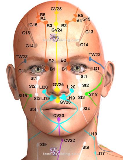 Карта биологически активных